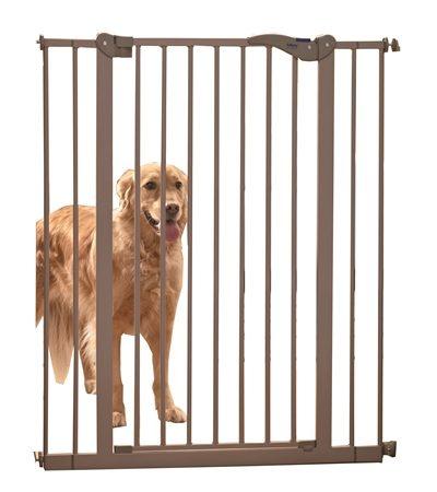 Trap hek hond