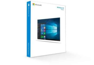 Windows 10 Professional (OEM)